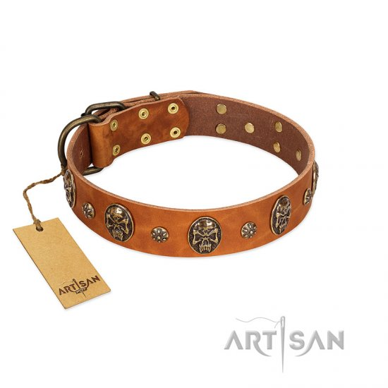 """Rockstar"" FDT Artisan Tan Leather Belgian Malinois Collar with Engraved Studs and Medallions"