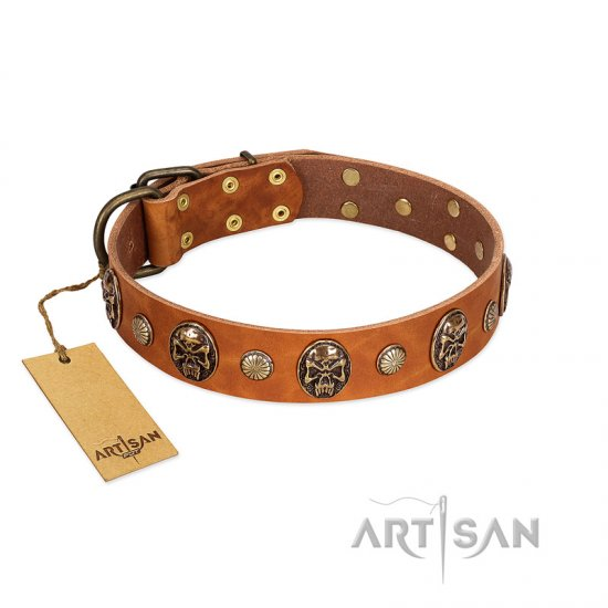 """Call of Feat"" FDT Artisan Tan Leather Belgian Malinois Collar with Old Bronze-like Studs and Oval Brooches"