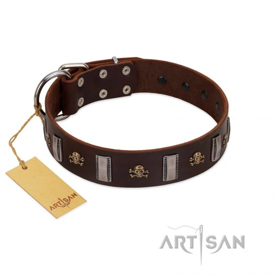 """War Chief"" FDT Artisan Genuine Brown Leather Belgian Malinois Collar with Skulls and Plates"