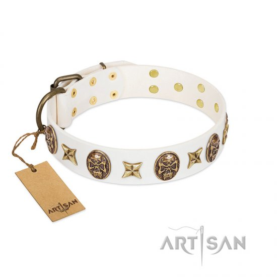 """Fads and Fancies"" FDT Artisan White Leather Belgian Malinois Collar with Stars and Skulls"