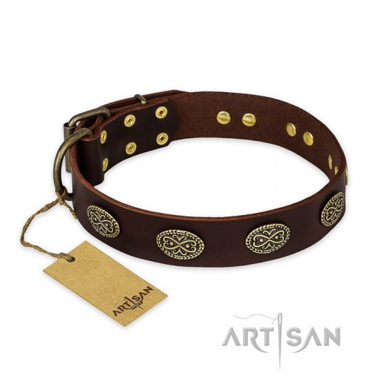 """Chocolate kiss"" FDT Artisan Leather Belgian Malinois Collar with Old Bronze Look Oval Plates"