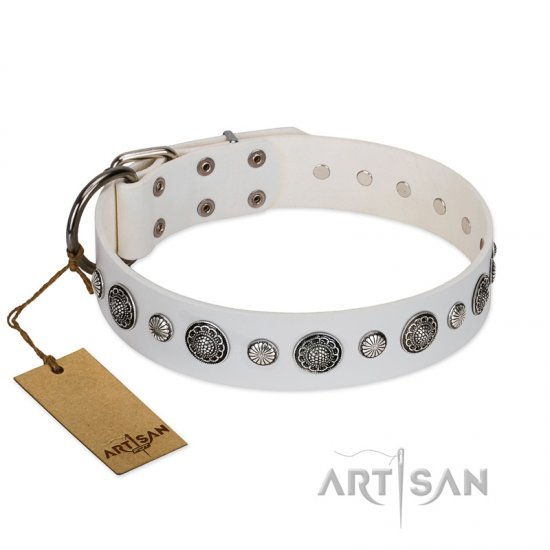 """Fluff-Stuff Beauty"" FDT Artisan White Leather Belgian Malinois Collar with Silver-like Studs and Conchos"