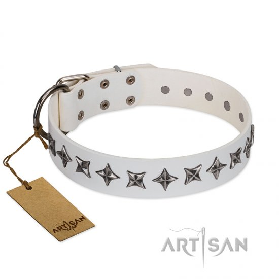 """Midnight Stars"" FDT Artisan Fashionable Leather Belgian Malinois Collar with Old Silver-like Plated Decorations"