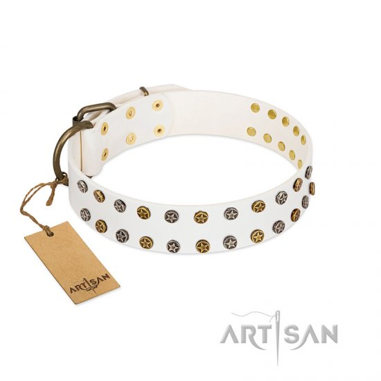 """Crystal Night"" FDT Artisan White Leather Belgian Malinois Collar with Two Rows of Small Studs"