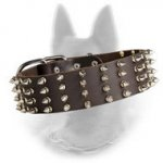 Spiked Belgian Malinois Leather Collar 2 inch Width
