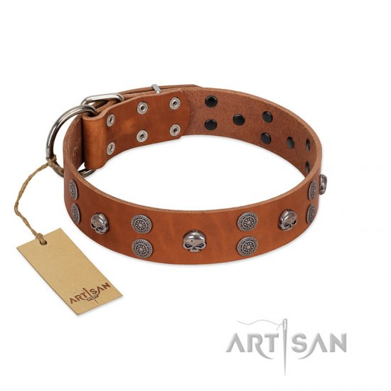 """Road Rider"" FDT Artisan Tan Leather Belgian Malinois Collar with Old Silver-like Skulls and Medallions"