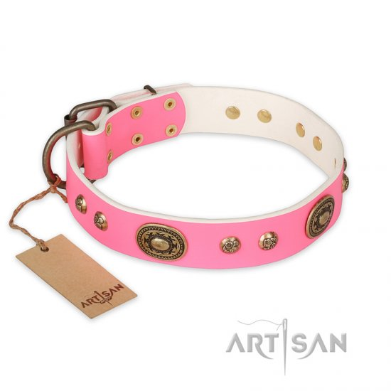 """Sensational Beauty"" FDT Artisan Pink Leather Belgian Malinois Collar with Old Bronze Look Plates and Studs"