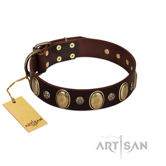 """Bronze Idol"" FDT Artisan Brown Leather Belgian Malinois Collar with Eye-catching Ovals and Small Studs"
