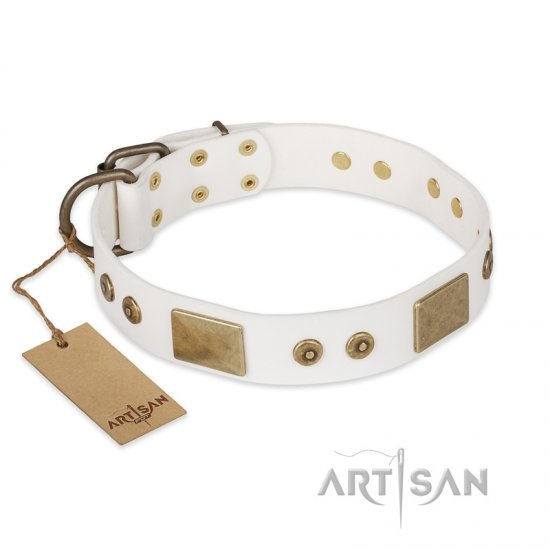 """Unforgettable Impress"" FDT Artisan Decorated Leather Belgian Malinois Collar with Decorations"