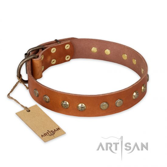 """Spring Flavor"" FDT Artisan Adorned Leather Belgian Malinois Collar with Old Bronze-Plated Engraved Studs"