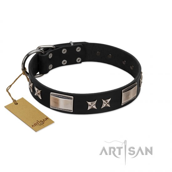 """Pitch Dark"" FDT Artisan Black Leather Belgian Malinois Collar with Stars and Plates"