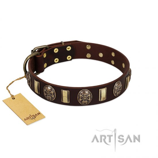 """Skull's Adventure"" FDT Artisan Brown Leather Belgian Malinois Collar with Plates and Ovals"