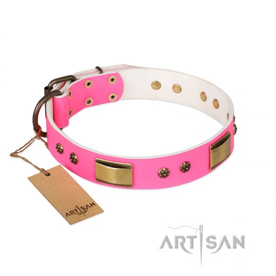 """Pink Daydream"" FDT Artisan Pink Leather Belgian Malinois Collar with Old Bronze Look Plates and Studs"