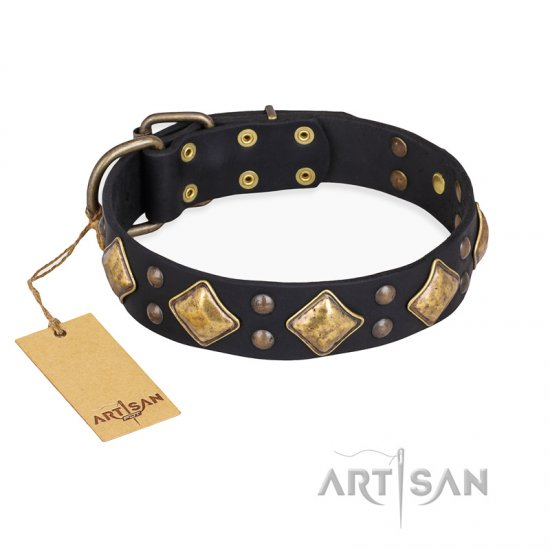 """Fancy-Schmancy"" FDT Artisan Studded Leather Belgian Malinois Collar"