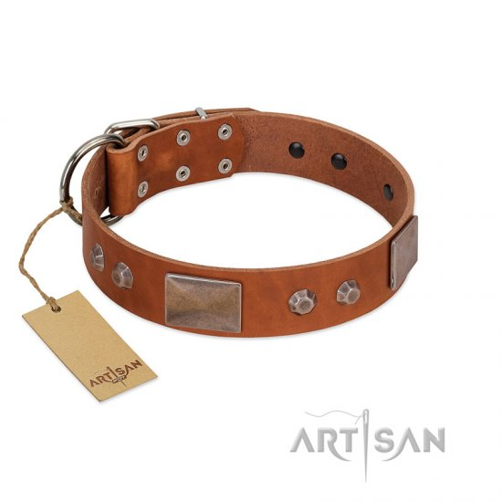 """Great Obelisk"" Handcrafted FDT Artisan Tan Leather Belgian Malinois Collar with Large Plates and Pyramids"