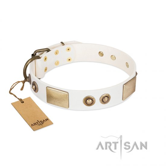 """Noble Impulse"" FDT Artisan White Leather Belgian Malinois Collar Adorned with Antique Plates and Studs"