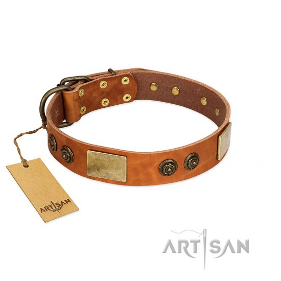 """Bronze Century"" FDT Artisan Tan Leather Belgian Malinois Collar with Plates and Brooches with Cool Ornament"