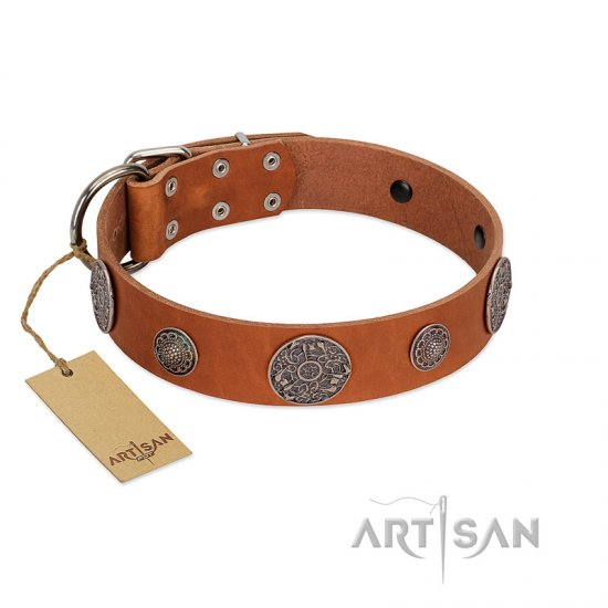 """Foxy Nature"" FDT Artisan Tan Leather Belgian Malinois Collar with Chrome Plated Brooches"