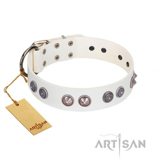 """Ancient Mystery"" FDT Artisan Handmade White Leather Belgian Malinois Collar with Silver-like Fitting"