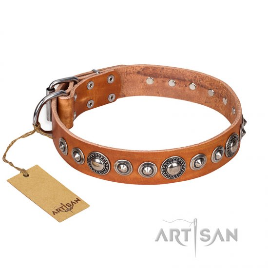 """Daily Chic"" FDT Artisan Tan Leather Belgian Malinois Collar with Decorations"