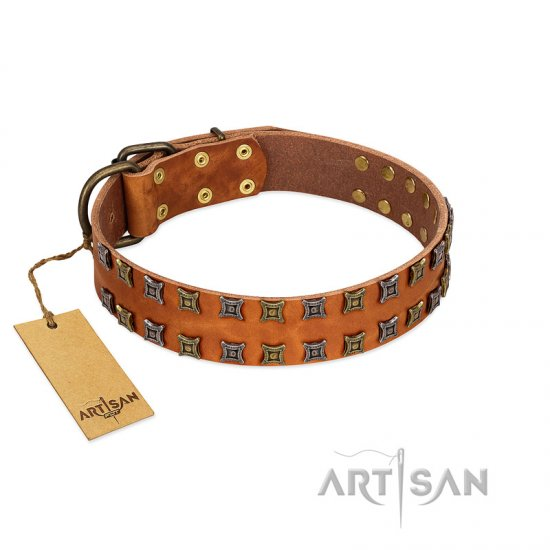 """Terra-cotta"" FDT Artisan Tan Leather Belgian Malinois Collar with Two Rows of Studs"