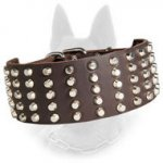 Leather Belgian Malinois Collar 3 Inch Width