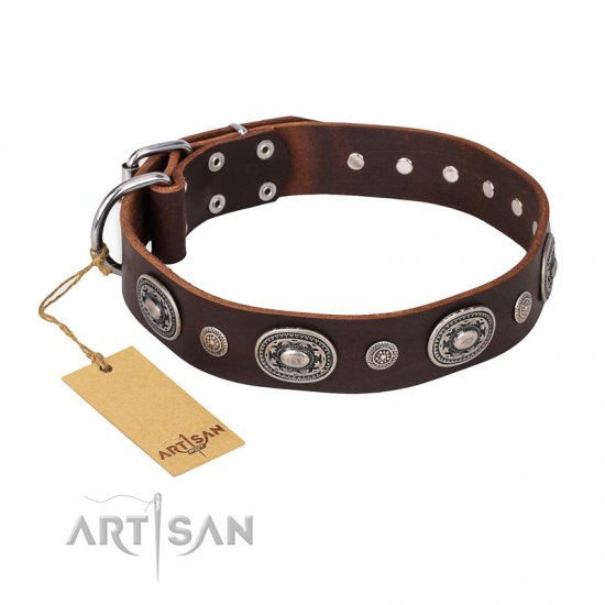 """Extra Pizzazz"" FDT Artisan Adorned Brown Leather Belgian Malinois Collar"