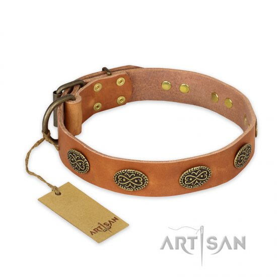 """Magic Amulet"" FDT Artisan Tan Leather Belgian Malinois Collar with Oval Studs"