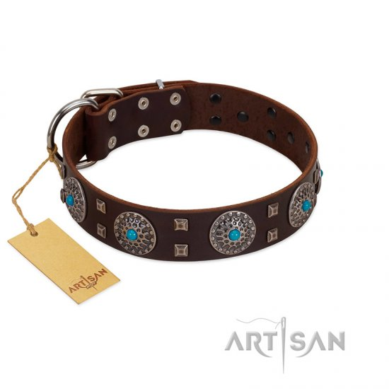 """Hypnotic Stones"" FDT Artisan Brown Leather Belgian Malinois Collar with Chrome Plated Brooches and Square Studs"