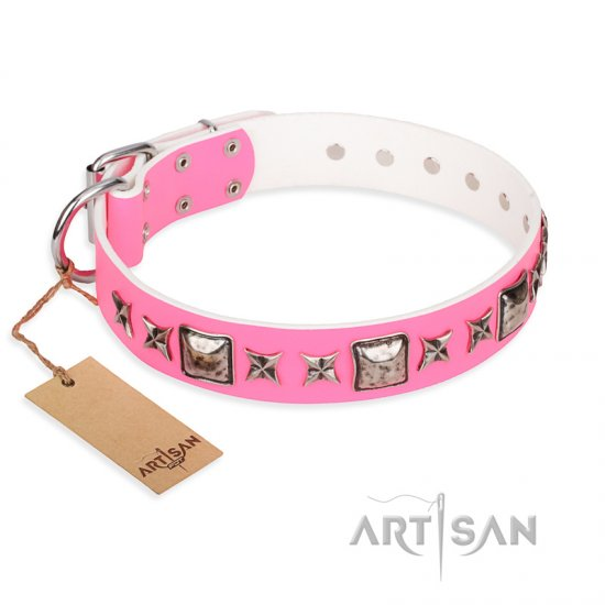 """Lady in Pink"" FDT Artisan Extravagant Leather Belgian Malinois Collar with Studs"