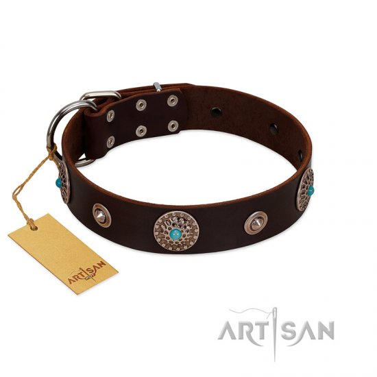 """Magic Stones"" FDT Artisan Brown Leather Belgian Malinois Collar with Chrome Plated Brooches and Studs"
