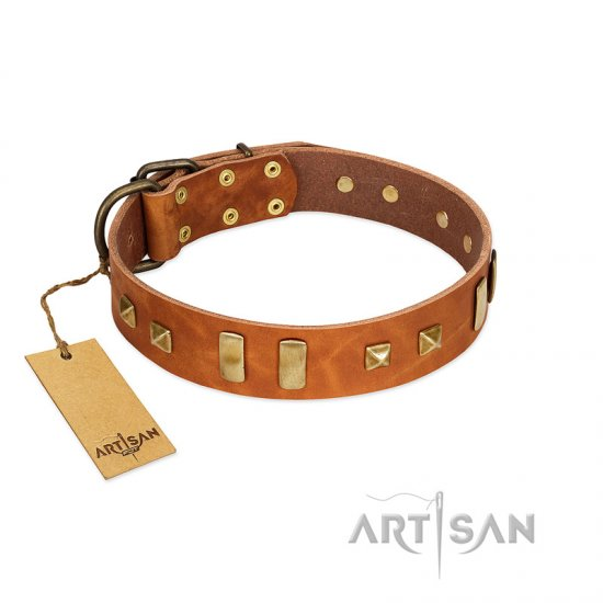 """Sand of Time"" FDT Artisan Tan Leather Belgian Malinois Collar with Old Bronze-like Studs and Plates"