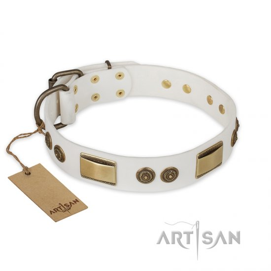 """Golden Avalanche"" FDT Artisan White Leather Belgian Malinois Collar with Old Bronze Look Plates and Circles"