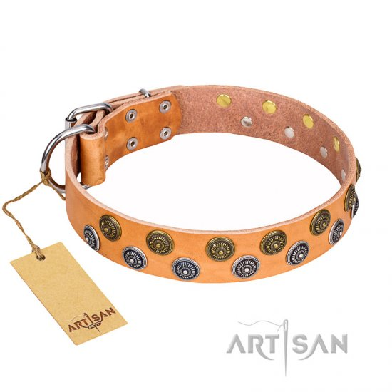 """Precious Sparkle"" FDT Artisan Decorated Leather Collar for Belgian Malinois"