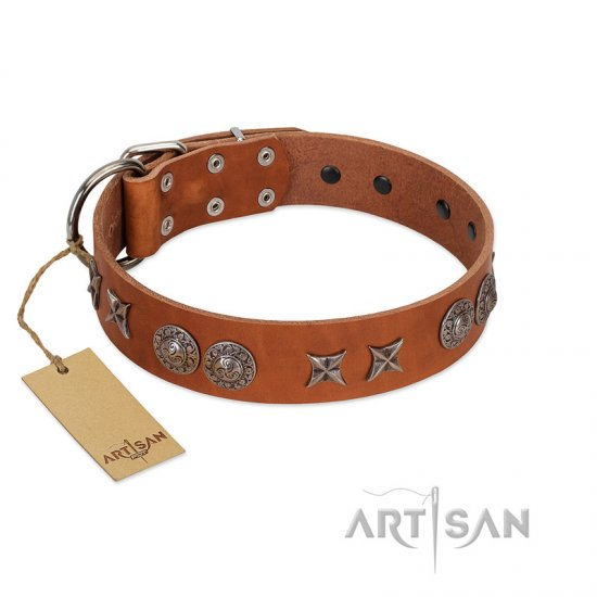 """Splendid Armor"" Premium Quality FDT Artisan Tan Designer Belgian Malinois Collar with Shields and Stars"