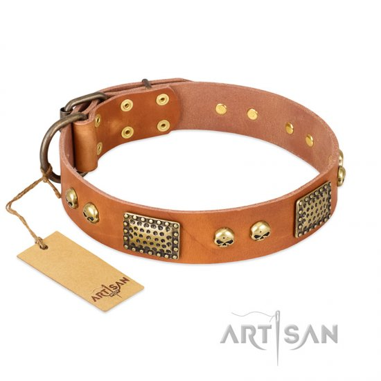 """Saucy Nature"" FDT Artisan Tan Leather Belgian Malinois Collar with Old Bronze Look Plates and Skulls"