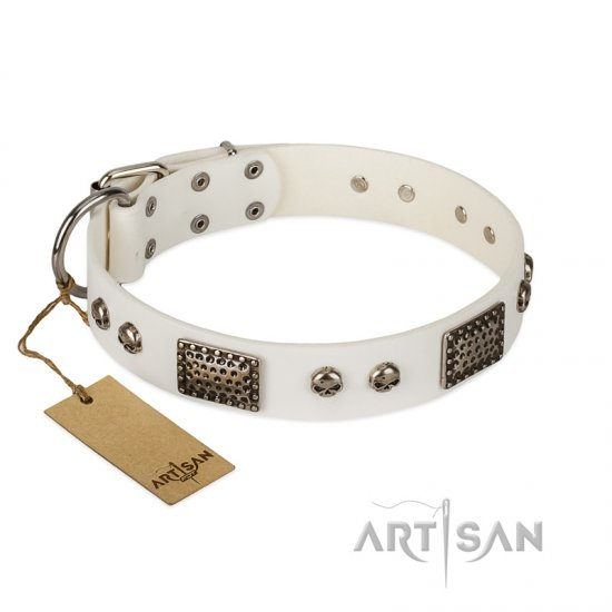 """Terrific Beauty"" FDT Artisan Beguiling White Leather Belgian Malinois Collar"