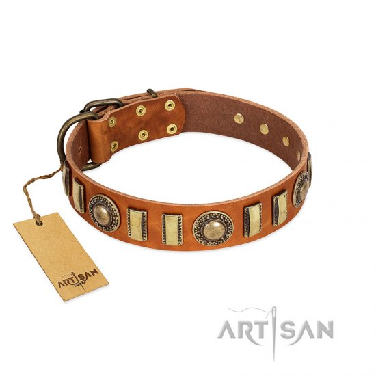 """Happy Hound"" FDT Artisan Tan Leather Belgian Malinois Collar with Elegant Decorations"