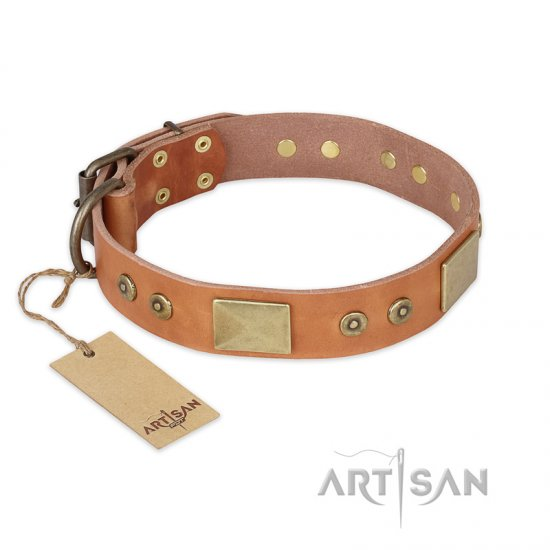 """The Middle Ages"" FDT Artisan Handcrafted Tan Leather Belgian Malinois Collar"