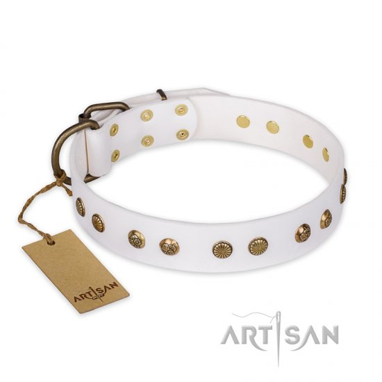 """Midnight Sun"" FDT Artisan White Leather Belgian Malinois Collar with Decorations"