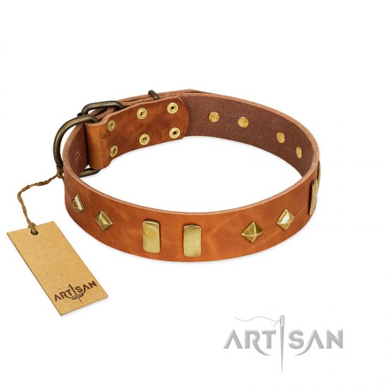 """Woofy Dawn"" FDT Artisan Tan Leather Belgian Malinois Collar with Plates and Rhombs"