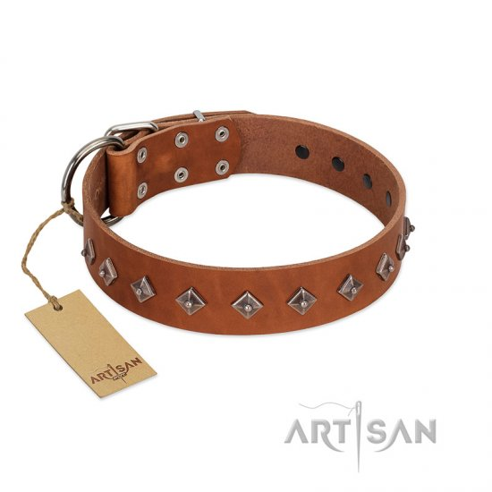"""Broadway"" Handmade FDT Artisan Tan Leather Belgian Malinois Collar with Dotted Pyramids"