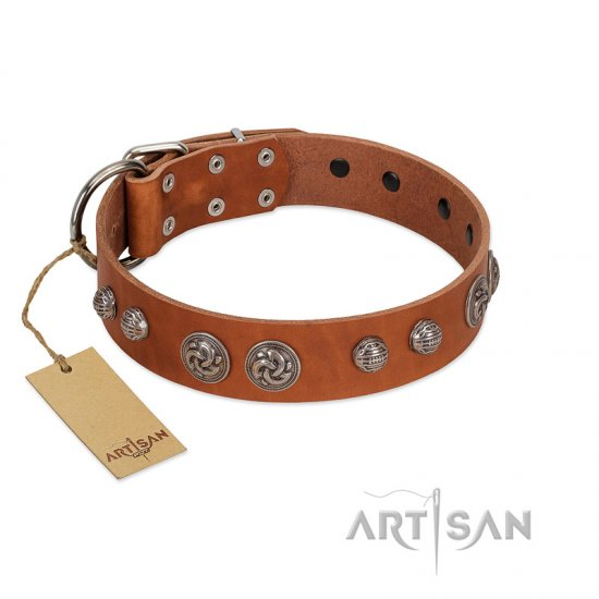 """Era Infinitum"" FDT Artisan Tan Leather Belgian Malinois Collar Adorned with Chrome-plated Circles"