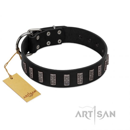 """Black Prince"" Handmade FDT Artisan Black Leather Belgian Malinois Collar with Silver-Like Adornments"