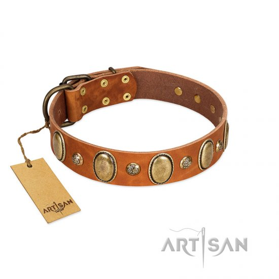"""Venus Breath"" FDT Artisan Tan Leather Belgian Malinois Collar with Vintage Looking Oval and Round Studs"