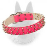 Pink Belgian Malinois Leather Collar with Nickel Spikes for Daily Stylish Walking