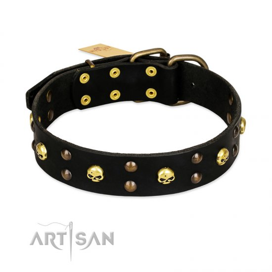 FDT Artisan 'Heavy Metal' Leather Belgian Malinois Collar with Skulls and Half-Balls 1 1/2 inch (40 mm)