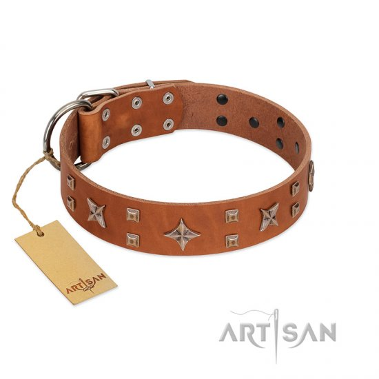 """Dreamy Gleam"" FDT Artisan Tan Leather Belgian Malinois Collar Adorned with Stars and Squares"