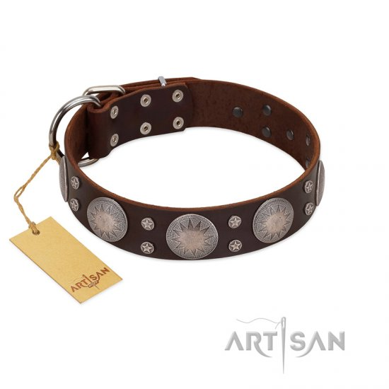 """Imperial Legate"" FDT Artisan Brown Leather Belgian Malinois Collar with Big Round Plates"