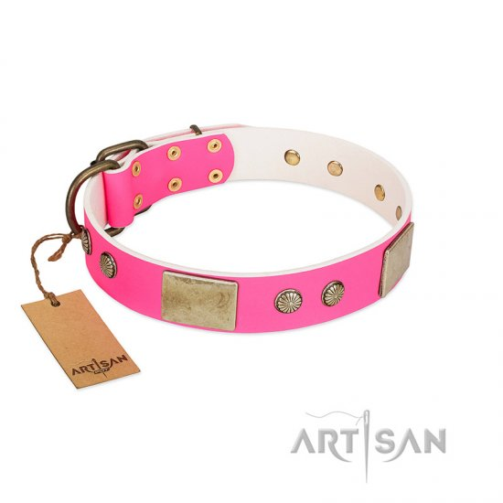 """Flower Parade"" FDT Artisan Pink Leather Belgian Malinois Collar with Plates and Studs"